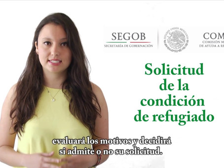 ¿Necesito la representación de un abogado para tramitar mi asilo y mi visa humanitaria en México?