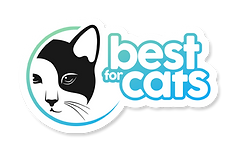 Logo Best for Cats