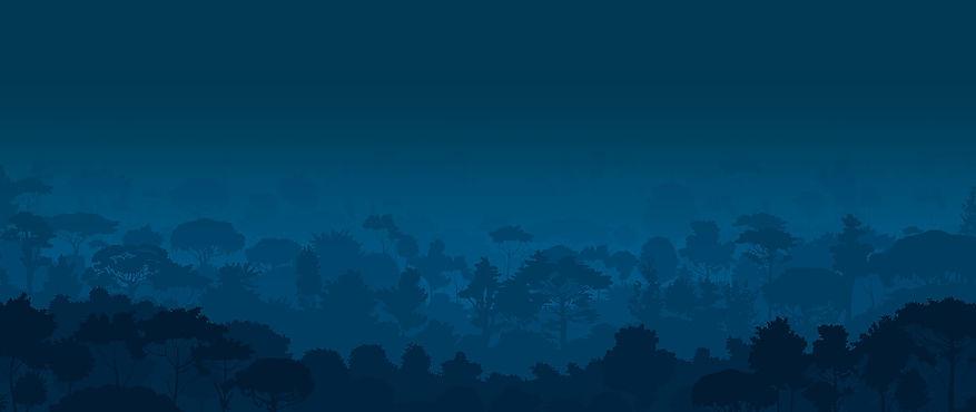 bosque-lluvioso-costa-rica.jpg