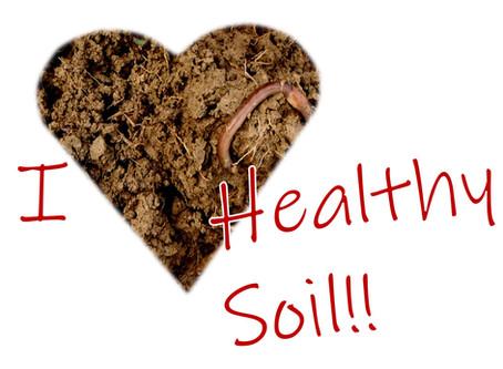 Healthy Soil is Like Chocolate Cake