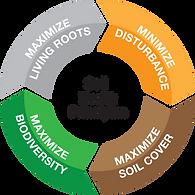 Soil health wheel.png