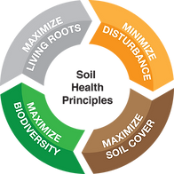 Soil health wheel.png