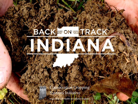 Soil Health Events: Back-on-Track