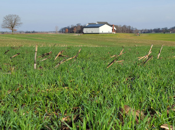 Lamey Farm Vanderburgh Co 03-2021.jpg
