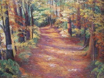 """""""Path to Brother's Brook"""""""