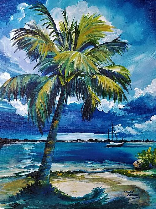 Paradise Palm
