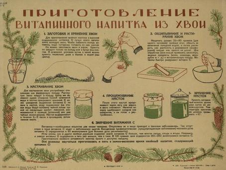 В 1941–1943 гг. в Новосибирске на базе Санитарного института...