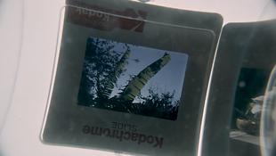 Screen Shot 2020-01-19 at 1.05.40 PM.png