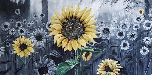 It's Not All Gray - Sunflowers2