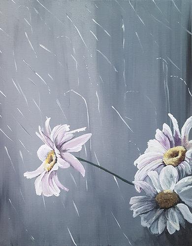 """""""Sun Shower Daisy"""""""