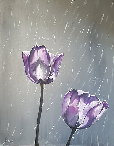 """Sun Shower Tulip"""