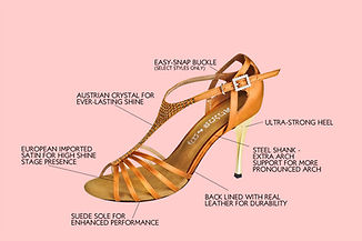 Make-up of a great dance shoe