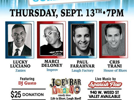 $25 Comedy Charity Show! (9/13) Help Stop Violence & Have Fun!