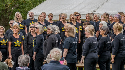 Thank you to Ponteland Party in the Park