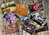 collage-1323417_640.jpg
