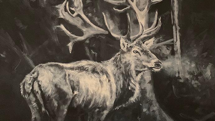 """""""Winter Elk"""" 20x24"""""""