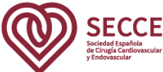 SECCE_signo-acronimo-logotipo-color_199x