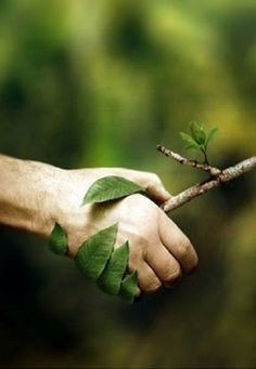 Why it is vital to go GREEN