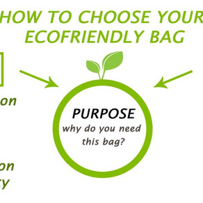 Things you need to consider before you buy an ECO-FRIENDLY Product