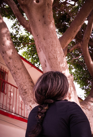 Every year, Ofelia honors her father by visiting him in his house in Tijuana, where he lived after he was deported.