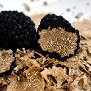 Spécialités à la truffe