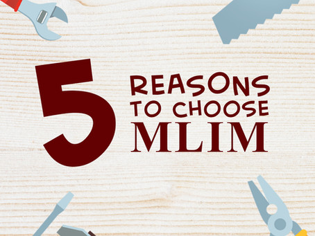 5 REASONS TO CHOOSE MLIM PLYWOOD