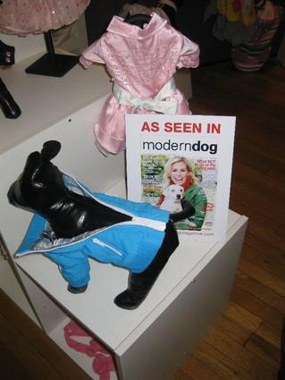 Quibus Paws Exclusive brand IS PET at Moderm Dog Magazine