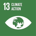 13 SDG, Climate Action, 13th Sustainable Development Goal, 13 sustainable development goal, 13th SDG, Green, Earth, eyes, Eye, Planet, home, every step, climate justice, climate actions, green actions, environment, greener earth, cleanr earth, sustainable actions, affordable actions, easy actions towards climte change