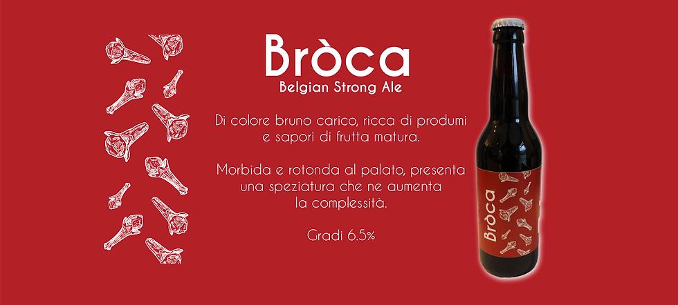 BrocaSito.png