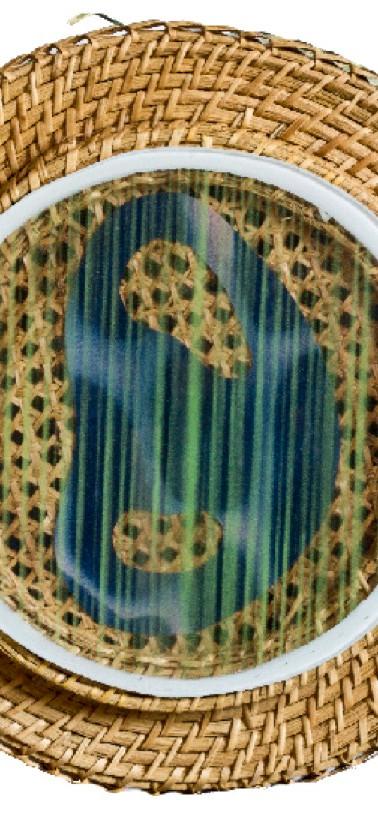 Bicephalus II