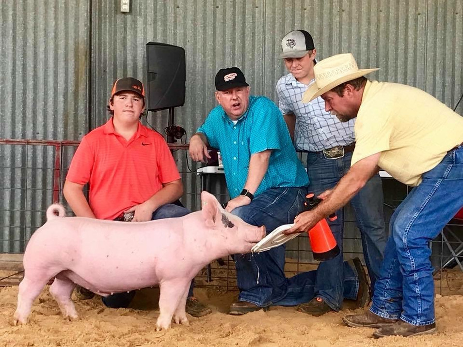 2018 EIGHTER FROM DECATUR JACKPOT, TX