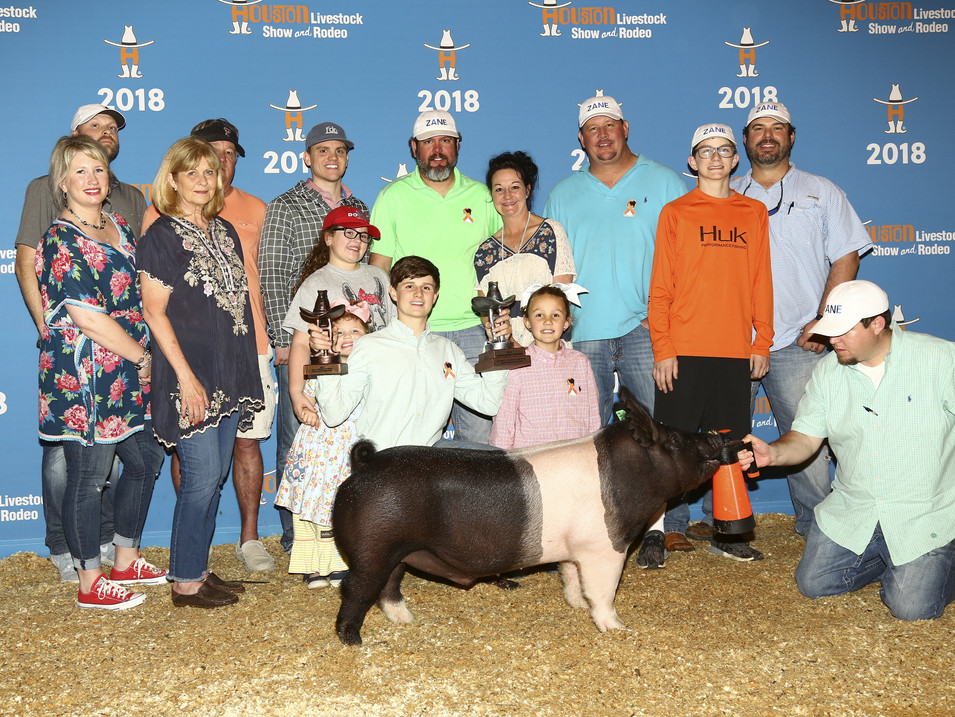 2018 HOUSTON LIVESTOCK SHOW & RODEO