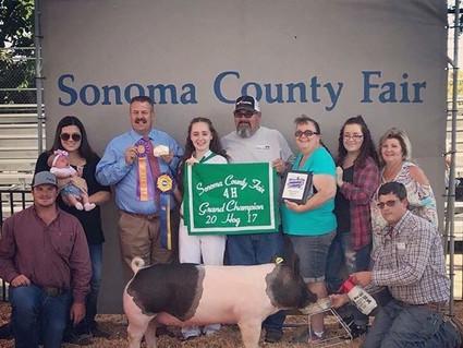 2017 SONOMA COUNTY FAIR, CA