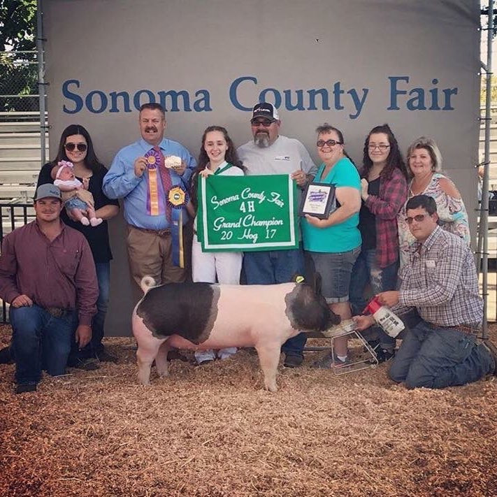 2017 SONOMA COUNTY FAIR, CA