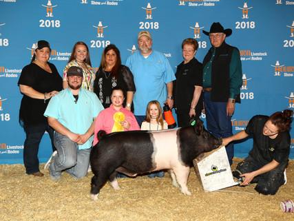 2018 Houston Livestock Show & Rodeo