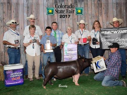 2017 COLORADO STATE FAIR