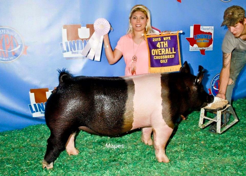 2015 WORLD PORK EXPO