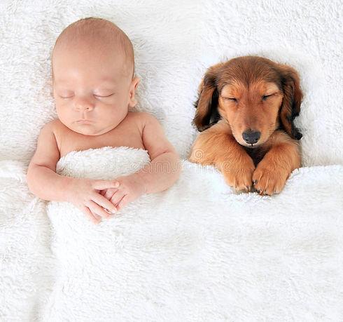Little Dreamer.jpg