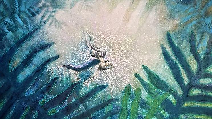Hidden Constellations- Julia Budden