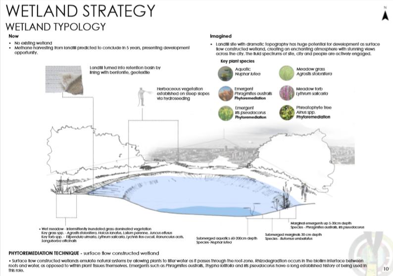 Wetland Strategy