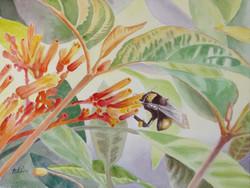 CHIN_teresa#3_Loving that Nectar