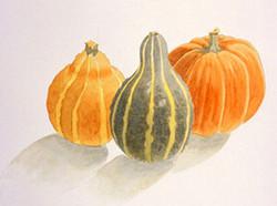 b3 gourds