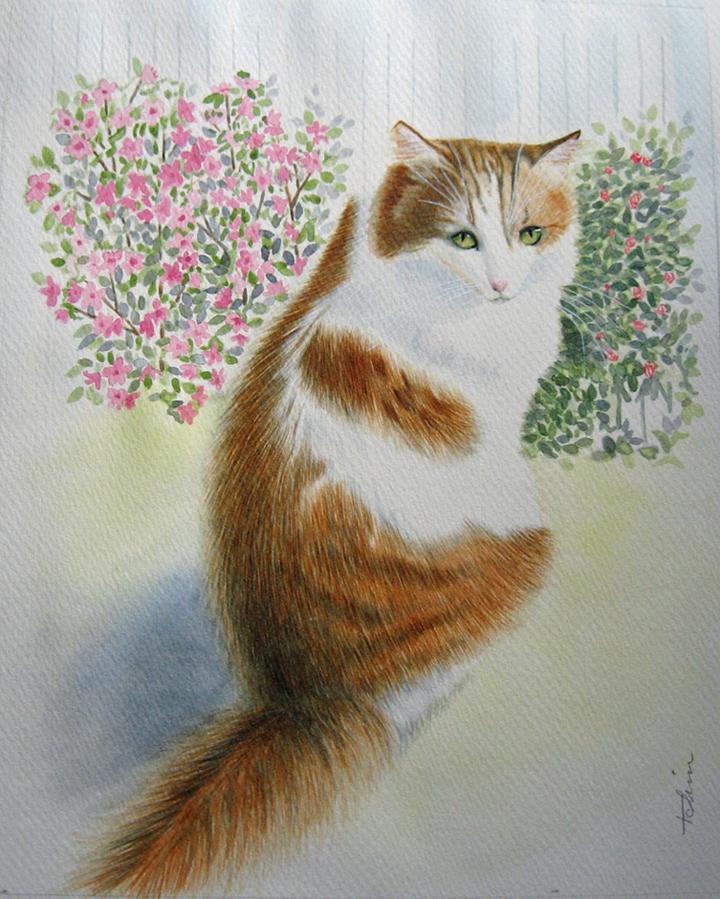 Teresa Chin_Garden Cat