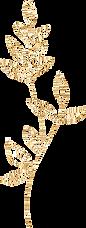 p_0020_gold-leaf-outline_edited.png