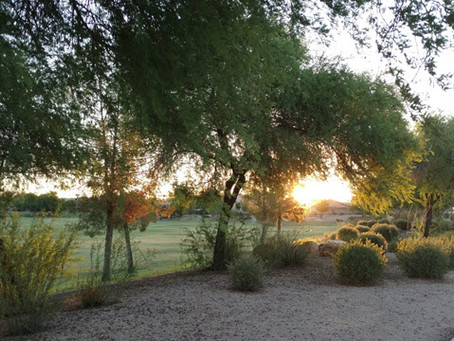 Peoria, Ariz. study earns ASIC Excellence in Irrigation Award