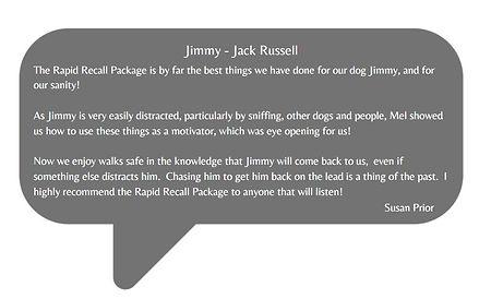 Rapid Recall reference 2.JPG