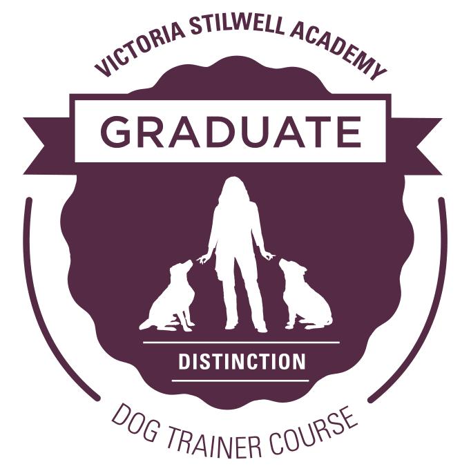 VSA_Graduate