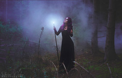 The Witch of the Forest