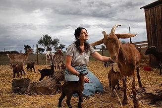 Visit to Goats farm