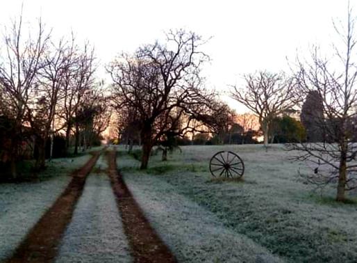 Entre Vírgulas: Minha estação preferida: o inverno!